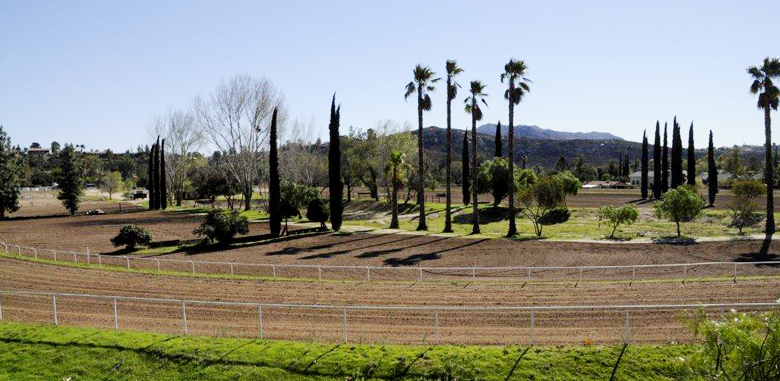 Our International Equestrian Center
