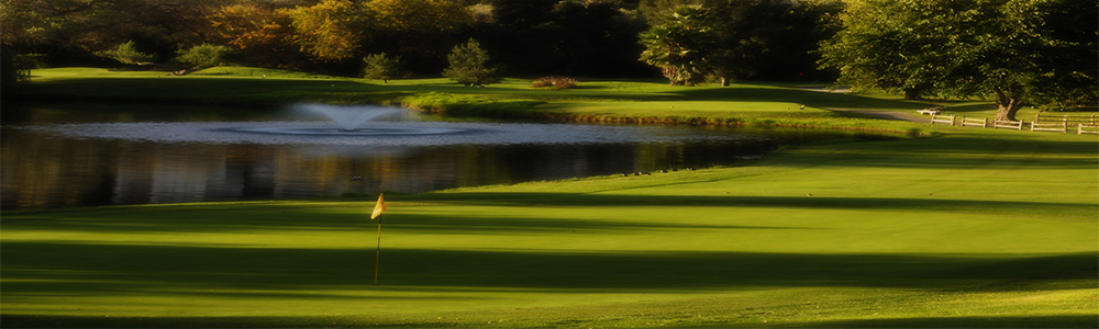 Our exclusive golf club for those passionate about golf and social events!